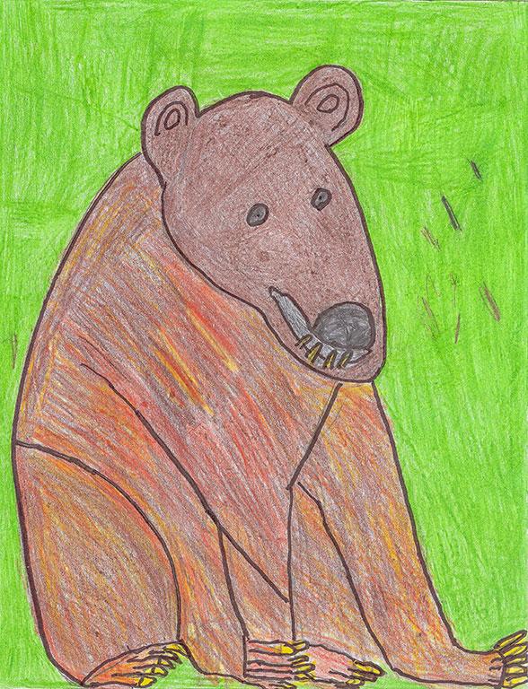 Scott-bear.jpg