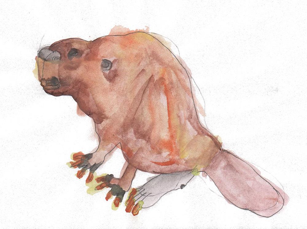 Nick-beaver.jpg