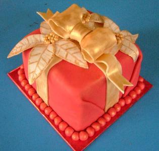 Christmas_cake_for_Robert_Dec_8_07_1_-315x300.jpg
