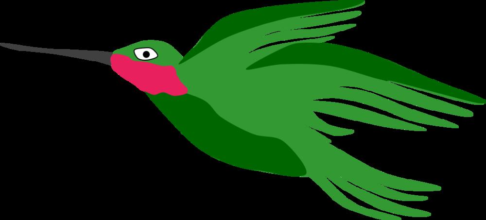 hummingbird carolyn braden.png
