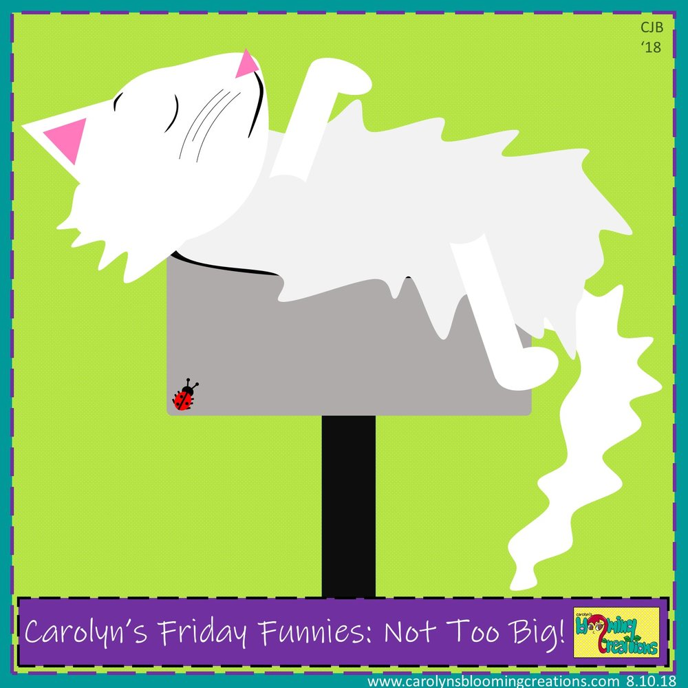 Carolyn Braden Friday Funny Not Too Big.jpg