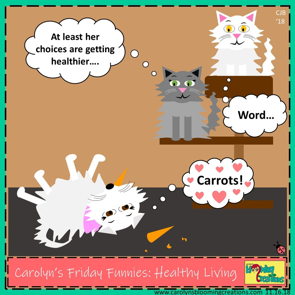 Carolyn Braden friday funny healthy living.jpg