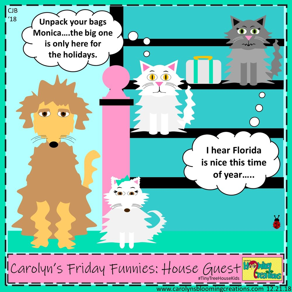 Carolyn Braden friday funny house guest.jpg