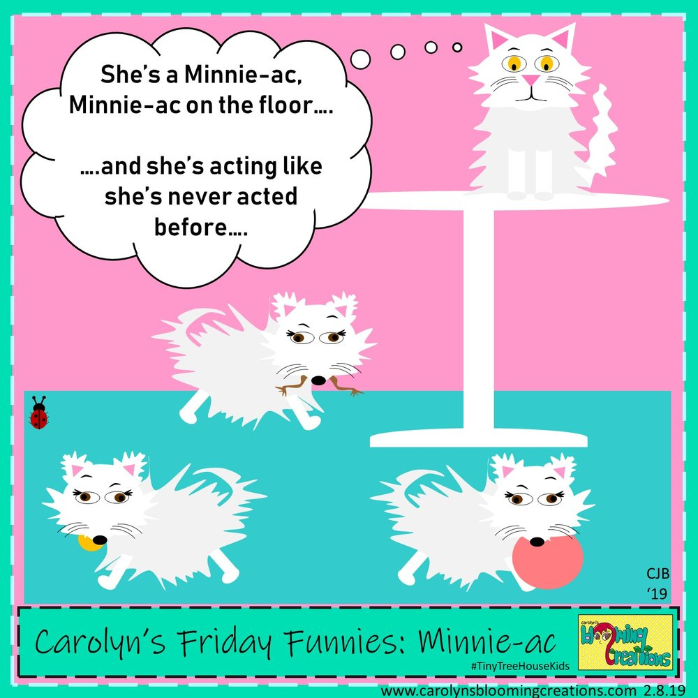 Carolyn Braden friday funny minnie ac.jpg