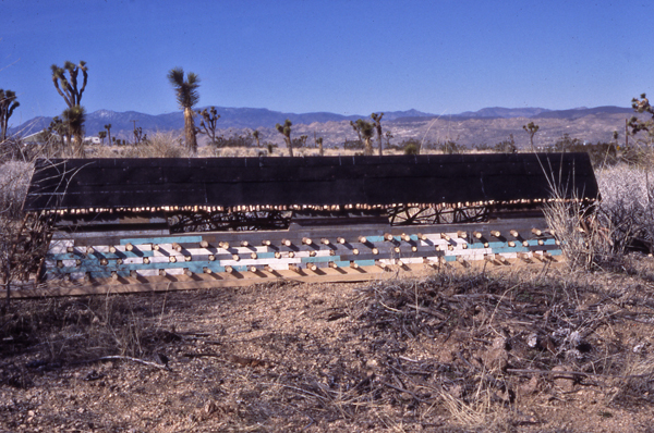 """Dry Heat Ion Wind"", Desert Installation"
