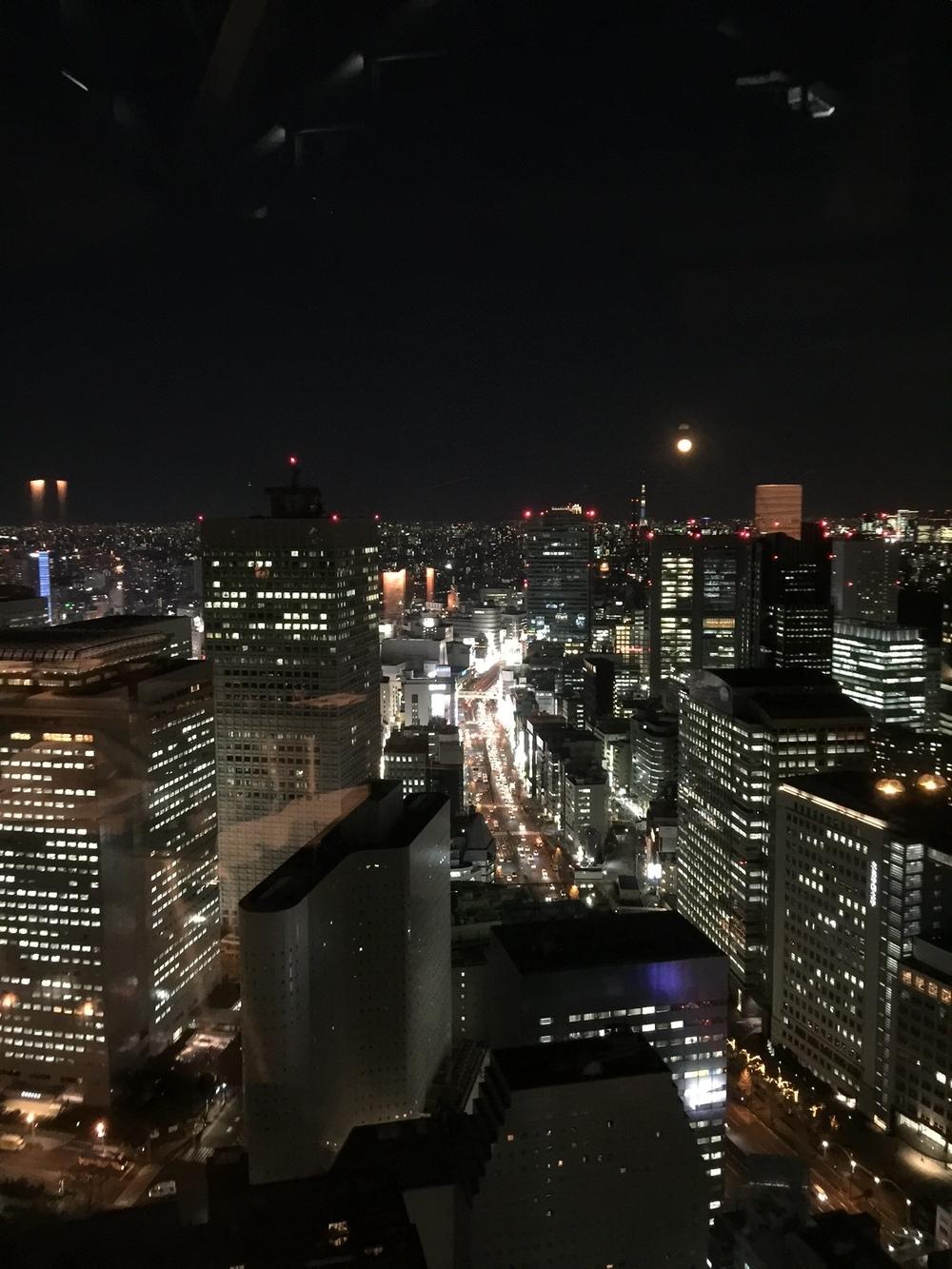 Utsikten fra hotellrommet.