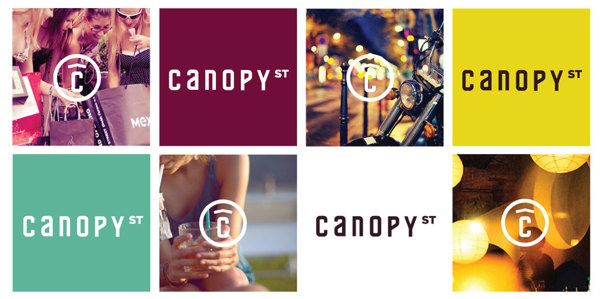 Canopy Street Branding and Color Palette