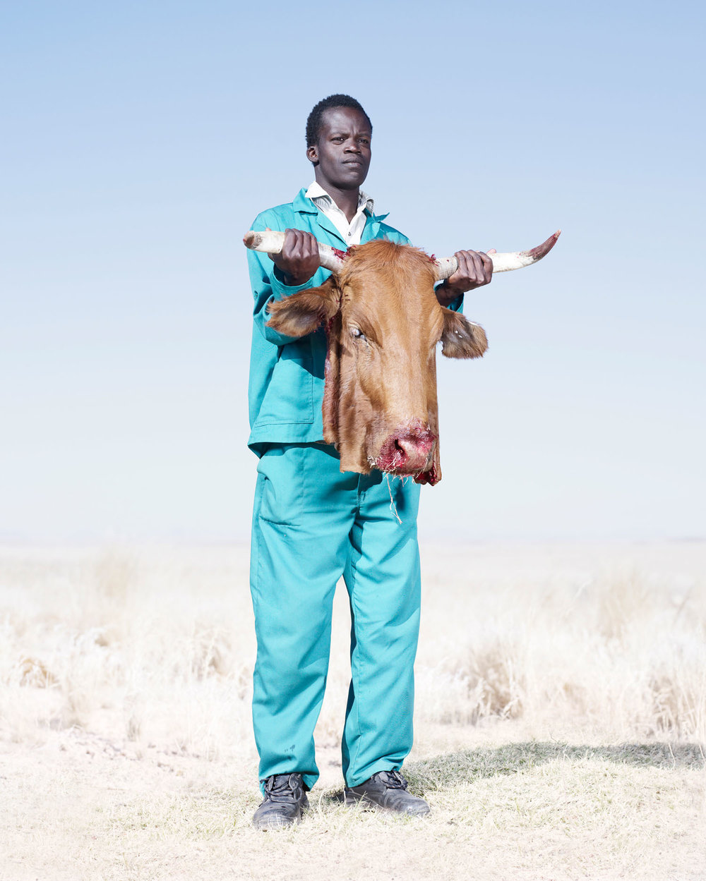 Herero Man With Cow's Head (2012)