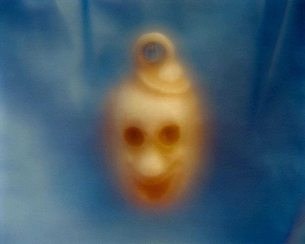 Face (2012)