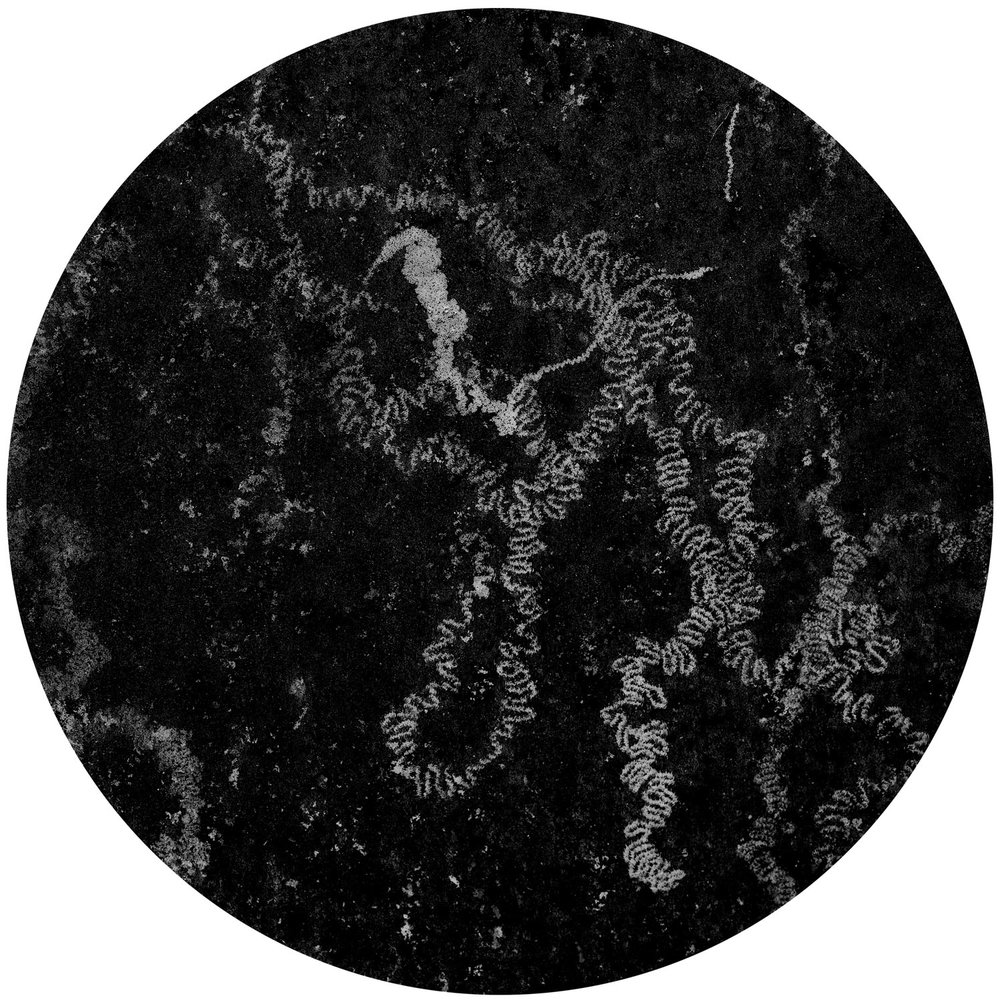 Carta Cosmographica (2009)