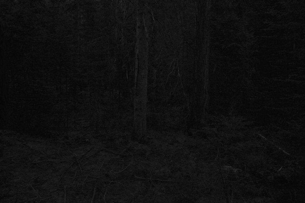 Evanescent (2012)