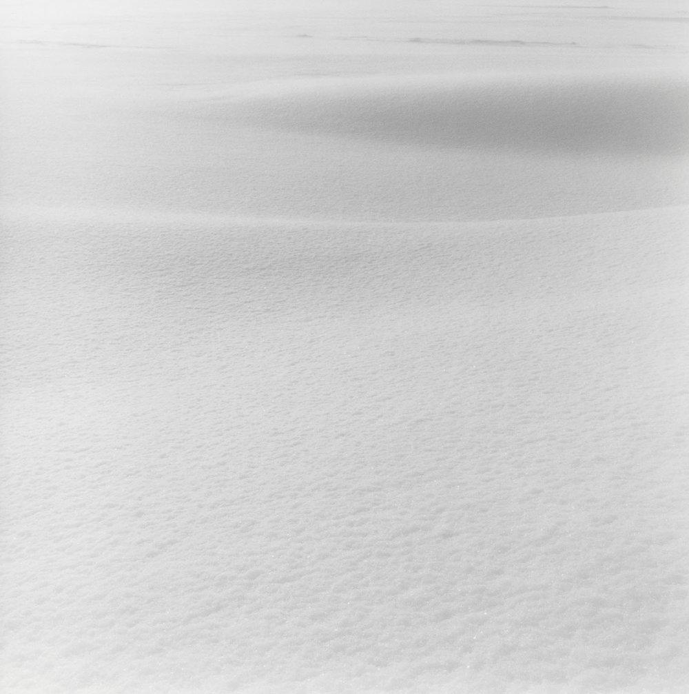 Winter (2010)