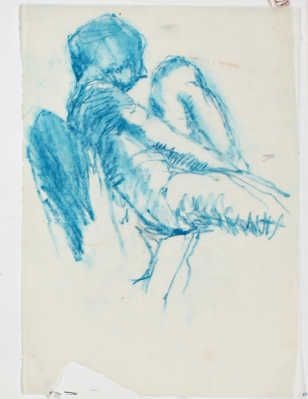 1980s_Blue_Angel_in_Profile_pastel_on_tracing_paper_11x7in_WPF582.jpg