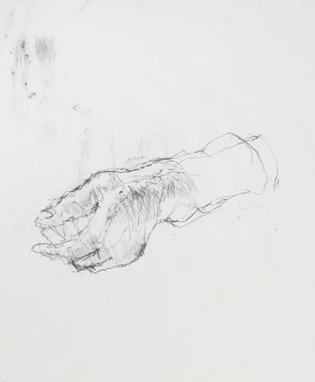 Study of Left Hand