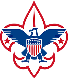 BSA Logo Only