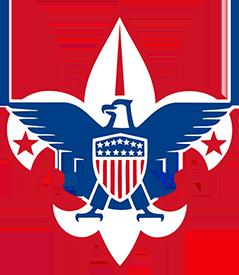 BSA Logo Only