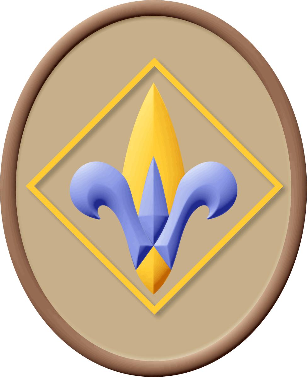 Webelos Resident Camp Registration Is Open | Boy Scouts of America