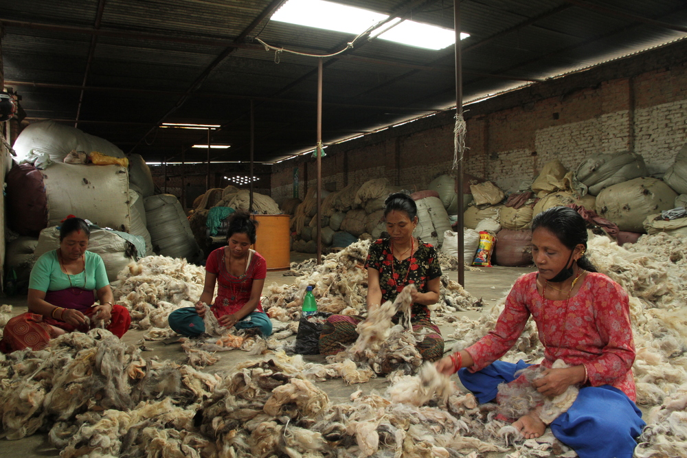 1. Wool Sorting.JPG