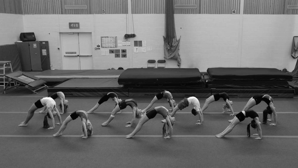 Bracknell Gymnastics Club   Contact
