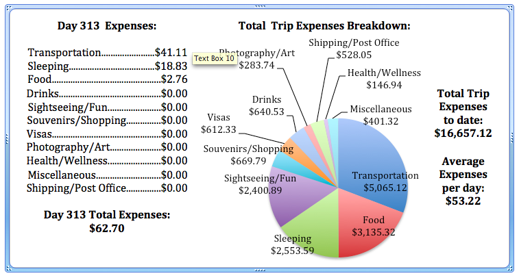 Day 313 Expenses png.png