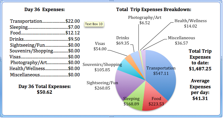 Day 36 Expenses.png