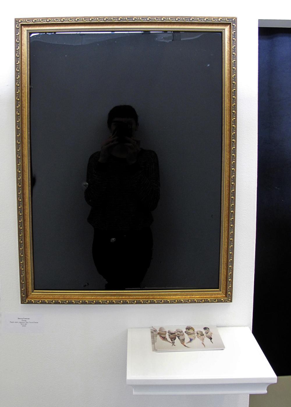 "Flytrap , 2015,Plastic resin, pigment, flies, found frame,20 X 26"""