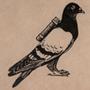 Passenger Pigeon by Mary Uthuppuru.