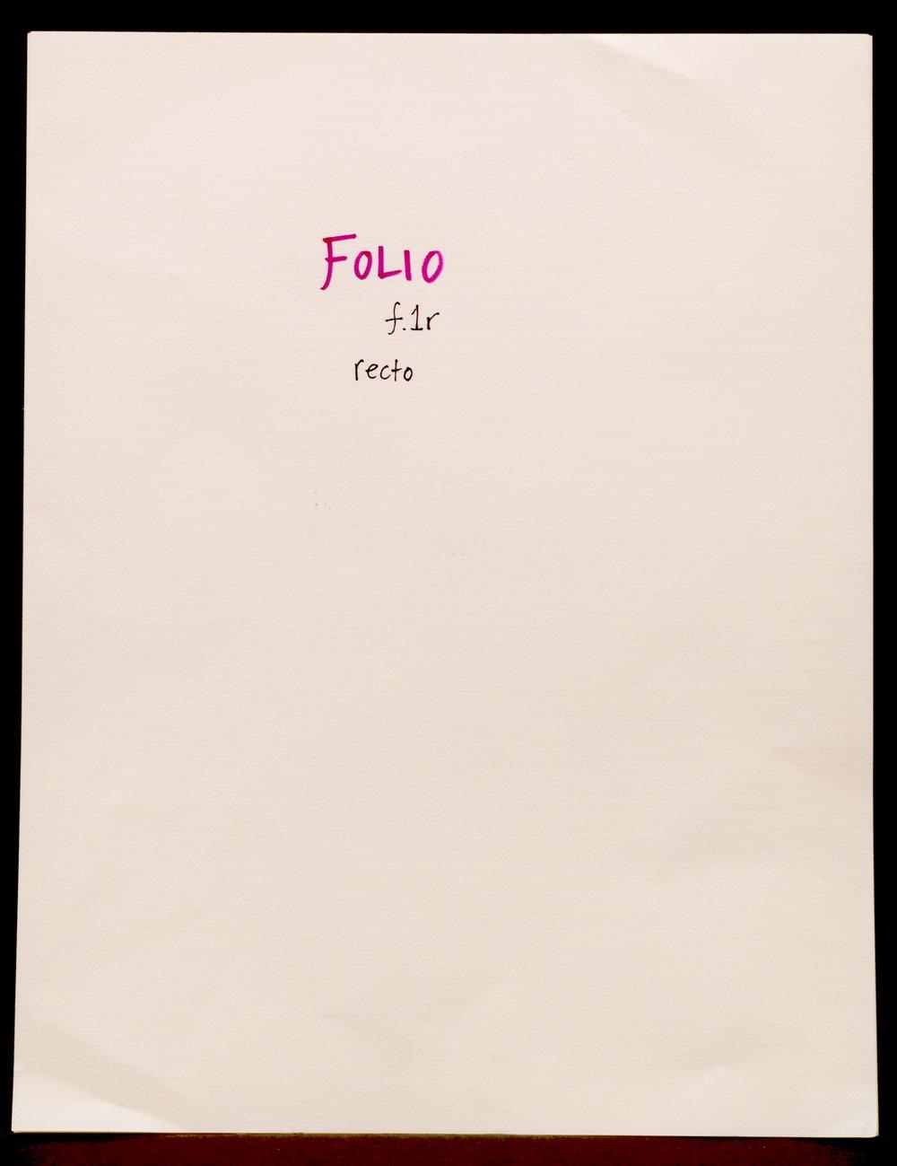 folio_recto_1_folium_DSC_0785.JPG