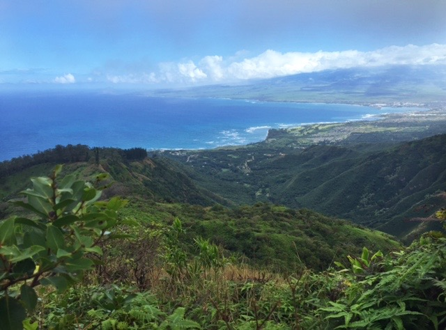 View from the Wahiee Ridge Trail - the are on the coast to the right is Kahului (where the airport is) and further down the coast (in the distance in pic) is Paia.