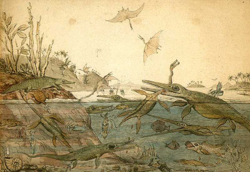 Henry De la Beche painted the Duria Antiquior to show how he imagined ancient Dorset, with all of Mary's fossil finds eating each other. Photo courtesy of Wikimedia Commons.