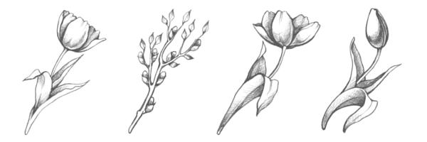Subscribe The Bloom Theory by Nakia Jones