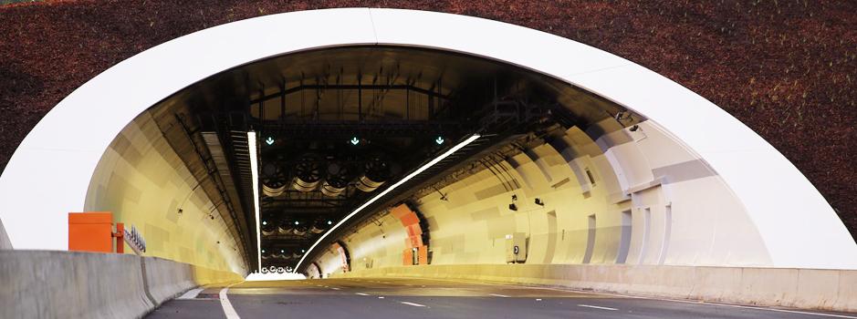 St Helena Tunnel looking in RMS.jpg
