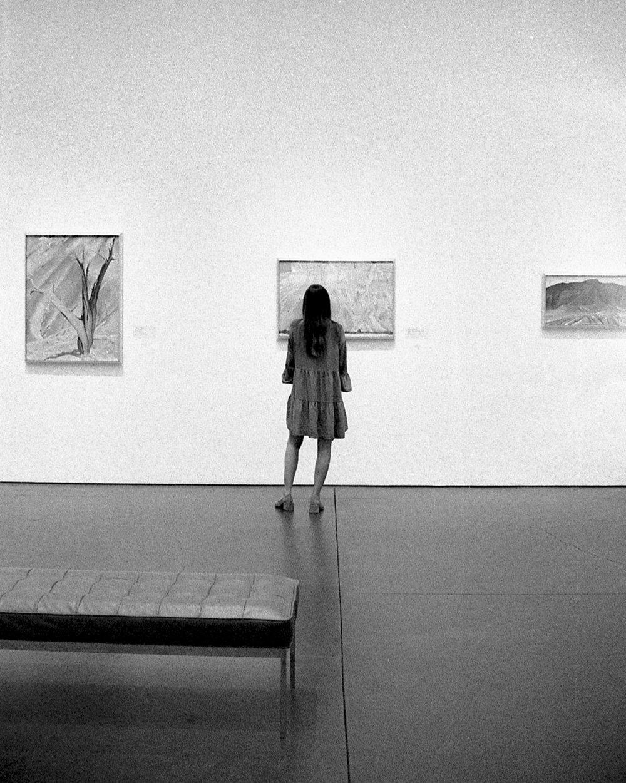 THE GEORGIA O'KEEFFE MUSEUM -