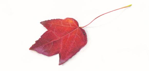 autumnleafmal