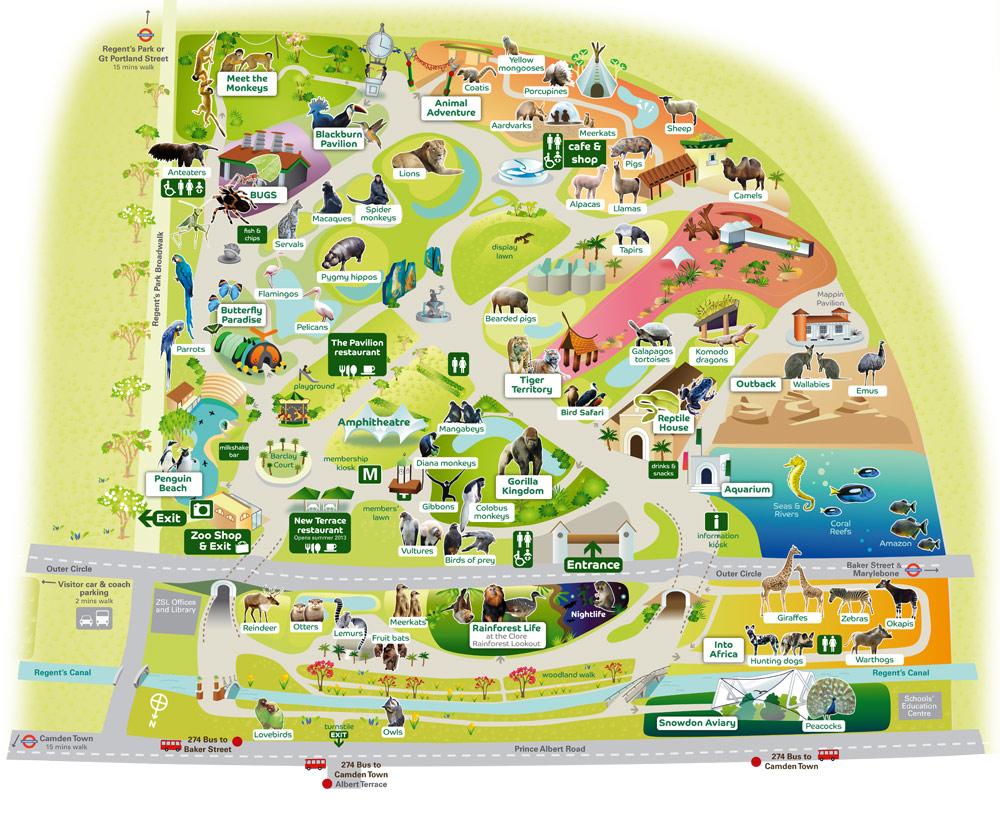 Le London Zoo Regents Park Est Lune Des Attractions Les Plus Clbres De Londres Et Constitue Une Visite Incontournable Pour Tous Enfants