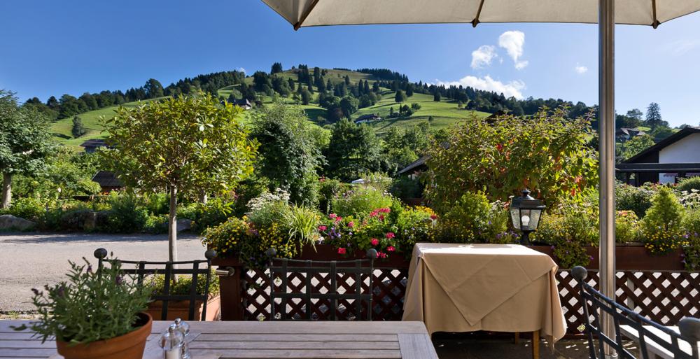 schwarzwald-terrasse.png