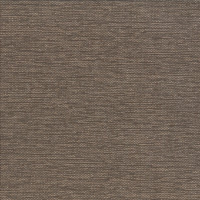 Honour Sable 100% Olefin 140cm |Plain Upholstery