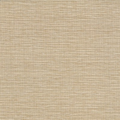 Aspect Honey 100% Olefin 140cm | Plain Upholstery