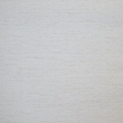 Aspect Vanilla 100% Olefin 140cm | Plain Upholstery