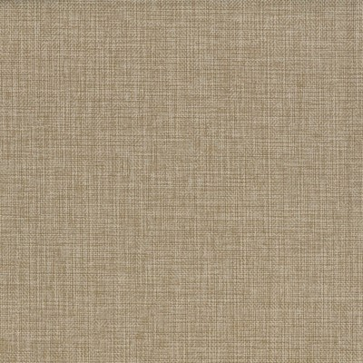 Vector Cookie 100% Olefin 140cm | Plain Upholstery