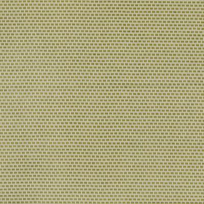 Nuevo Celery 100% Polyester 140cm |1cm Dual Purpose