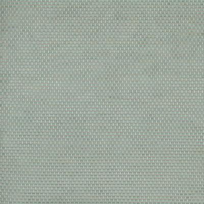 Nuevo Robin 100% Polyester 140cm |1cm Dual Purpose