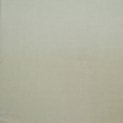 Abbey Willow 68% Poly/21% Linen/11% Cott 142cm | Plain Dual Purpose