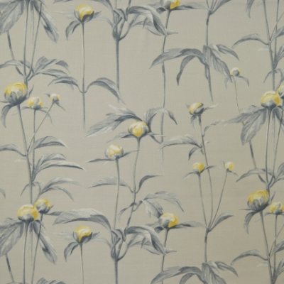 Claredon Mimosa 83% Cotton/17% Linen 137cm | 64cm Dual Purpose