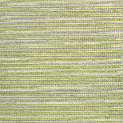 Kimi Citrus 49.9% Poly/42.8% Acry/7.3% Visc 145(useable 142cm) |10cm Dual Purpose