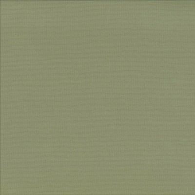 Deck Moss   100% polyester    183cm | Plain    Indoor/Outdoor
