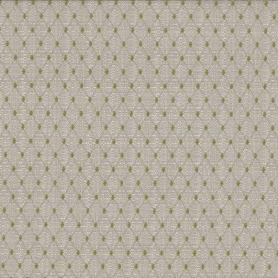 Gem Pear  51% Acrylic/49% Olefin  140cm | 2.5cm  Upholstery