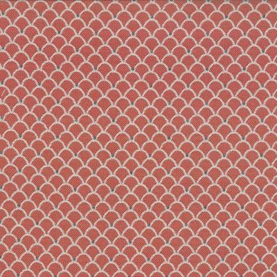 Petite Ruby   38% Olefin/38% Acrylic/24% Polyester    140cm |  3.5cm    Upholstery