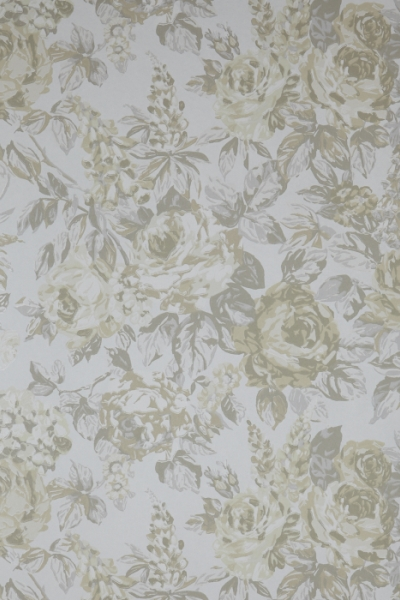 English Rose Ivory  70cm