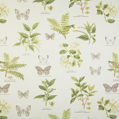 Botany Acacia 100% cotton 137cm | 61cm Dual Purpose